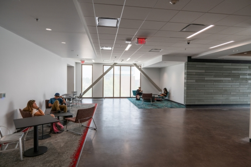 Students study in one of the multiple common areas throughout the Carolyn and Kem Gardner Commons.